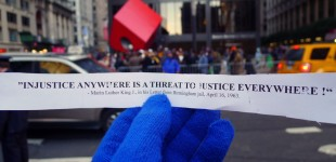 OWS ACTIONS TODAY 111711-LIVE FEEDS