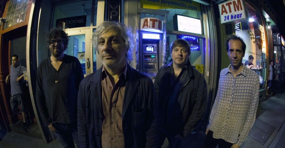 LEE RANALDO AND THE DUST BY MICHAEL LAVINE 1